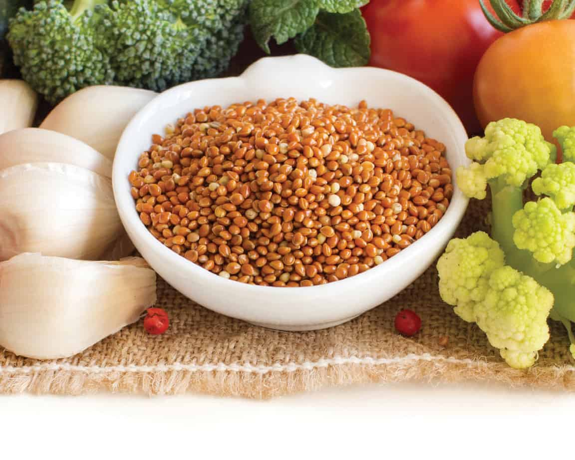better nutrition fiber evaluation